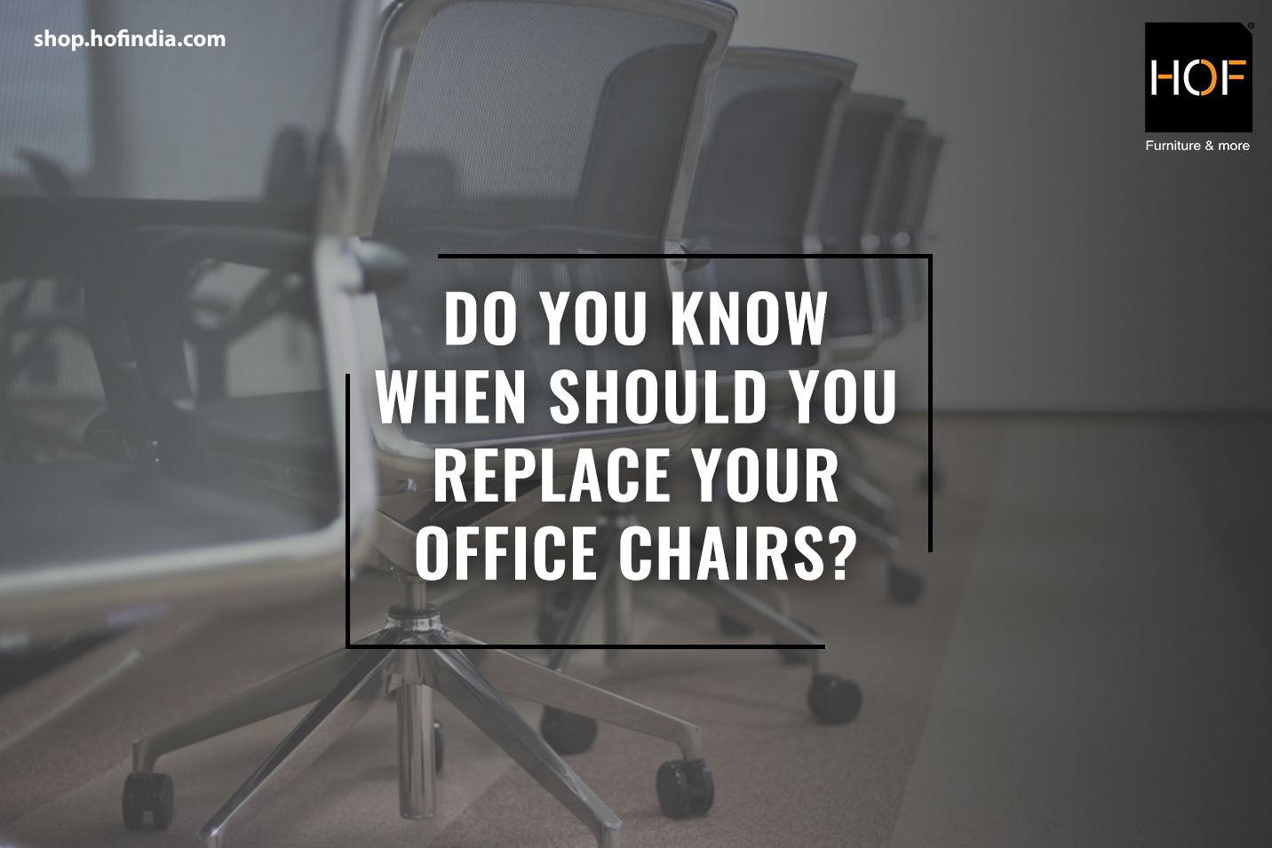 buy office chairs from HOF